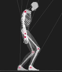 external image esqueleto.jpg