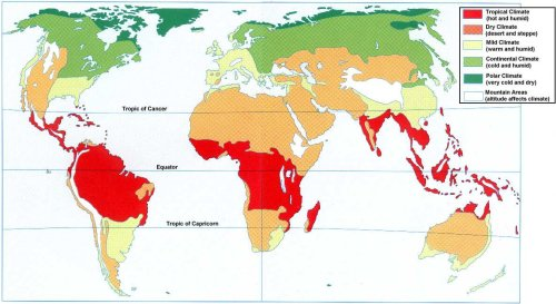 Climateandweather a hot zone between the tropic of cancer and the tropic of capricorn high temperatures all year round tropical climate and dry climate gumiabroncs Choice Image